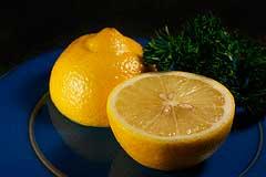 лимон и петрушка