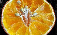 семена в апельсине