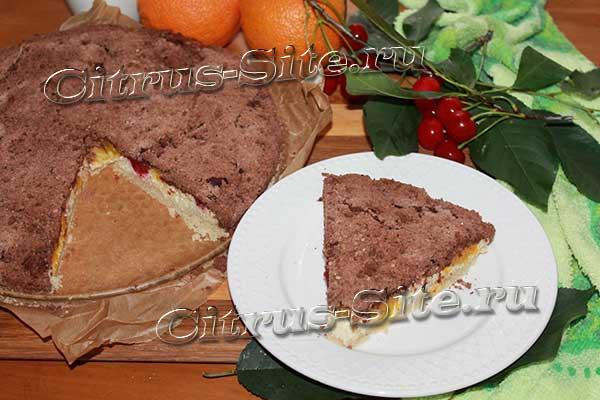 кусок творожного пирога с крошками сверху